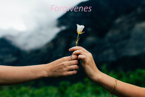 Forgiveness in Remarriage